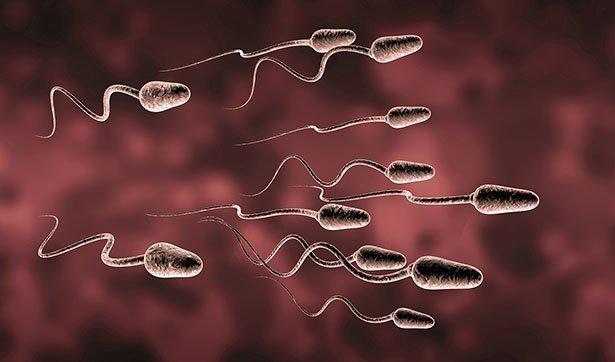 Weniger sperma ursachen