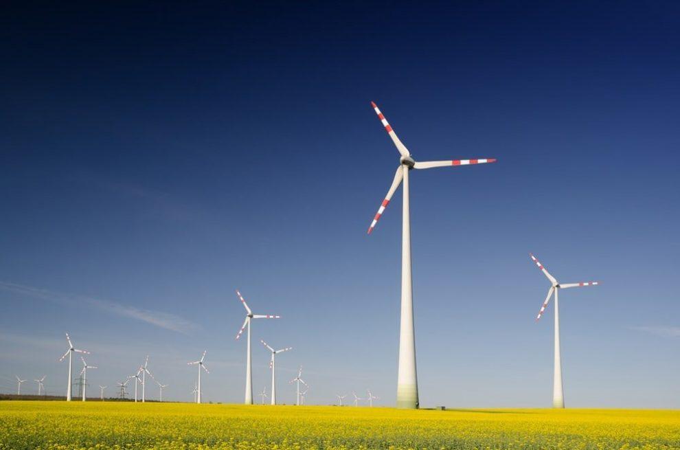 Windräder und Rapsfelder
