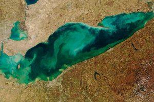 Algen im Eriesee