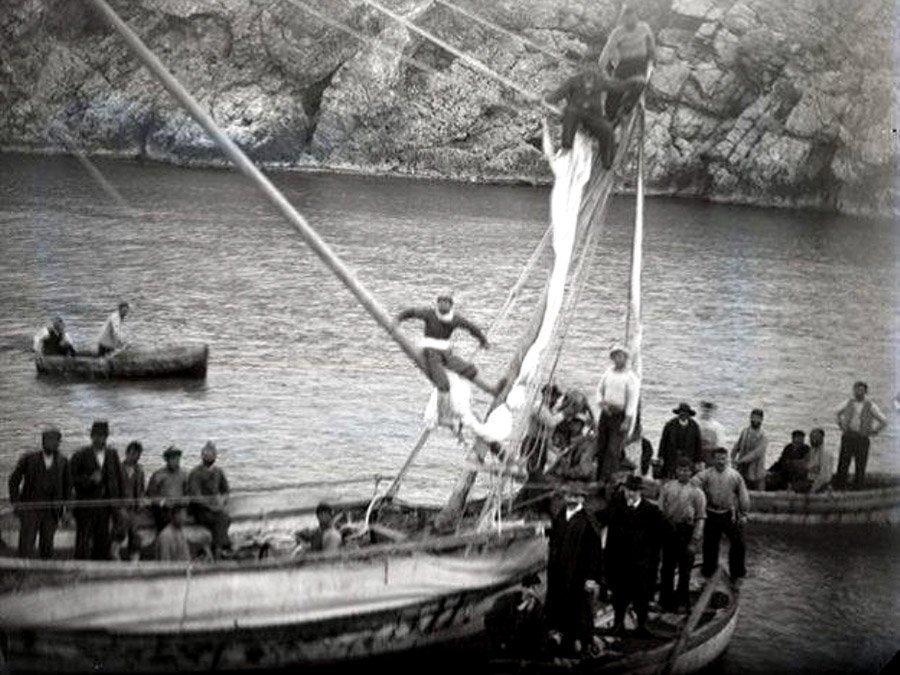 Bergung 1901