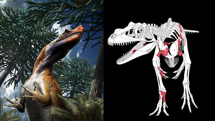 Ältester Riesen-Raubsaurier entdeckt