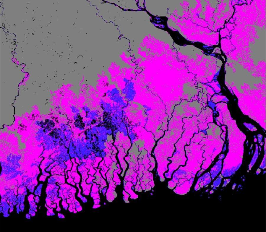 Küste von Bangladesch
