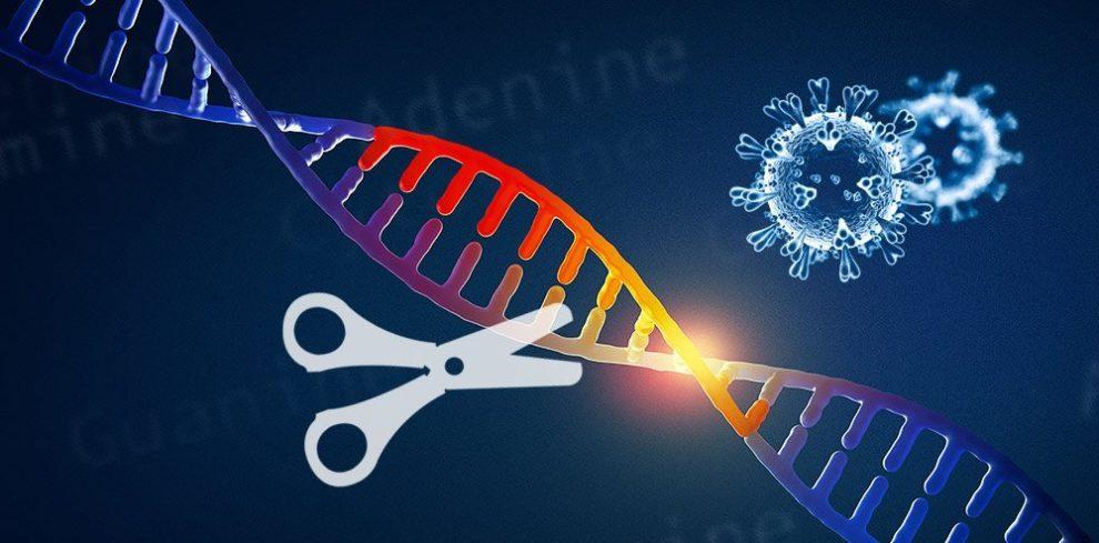 Coronavirus und CRISPR