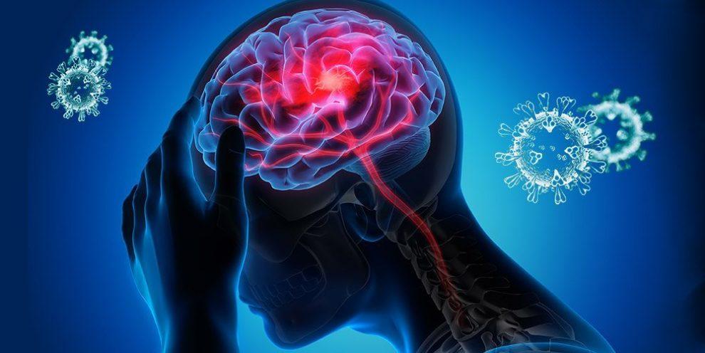 Nervensystem und Coronavirus