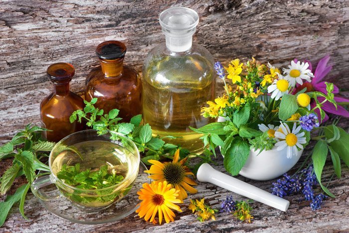 Pflanzenmedizin