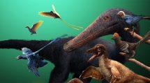 gefiederte Dinosaurier