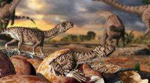 Dino-Babys