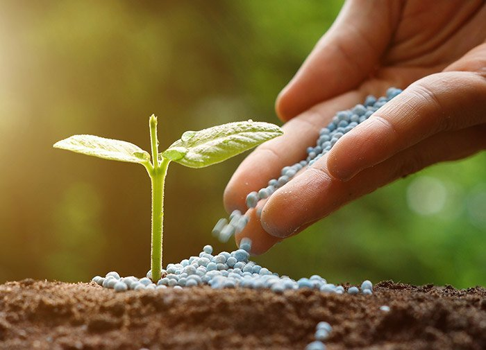 Partnervermittlung landwirte