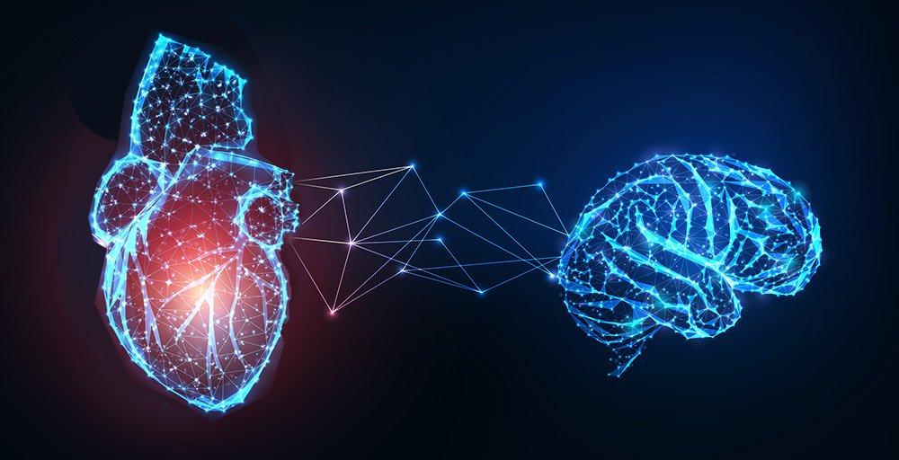 Wie ein schwaches Herz dem Hirn schadet