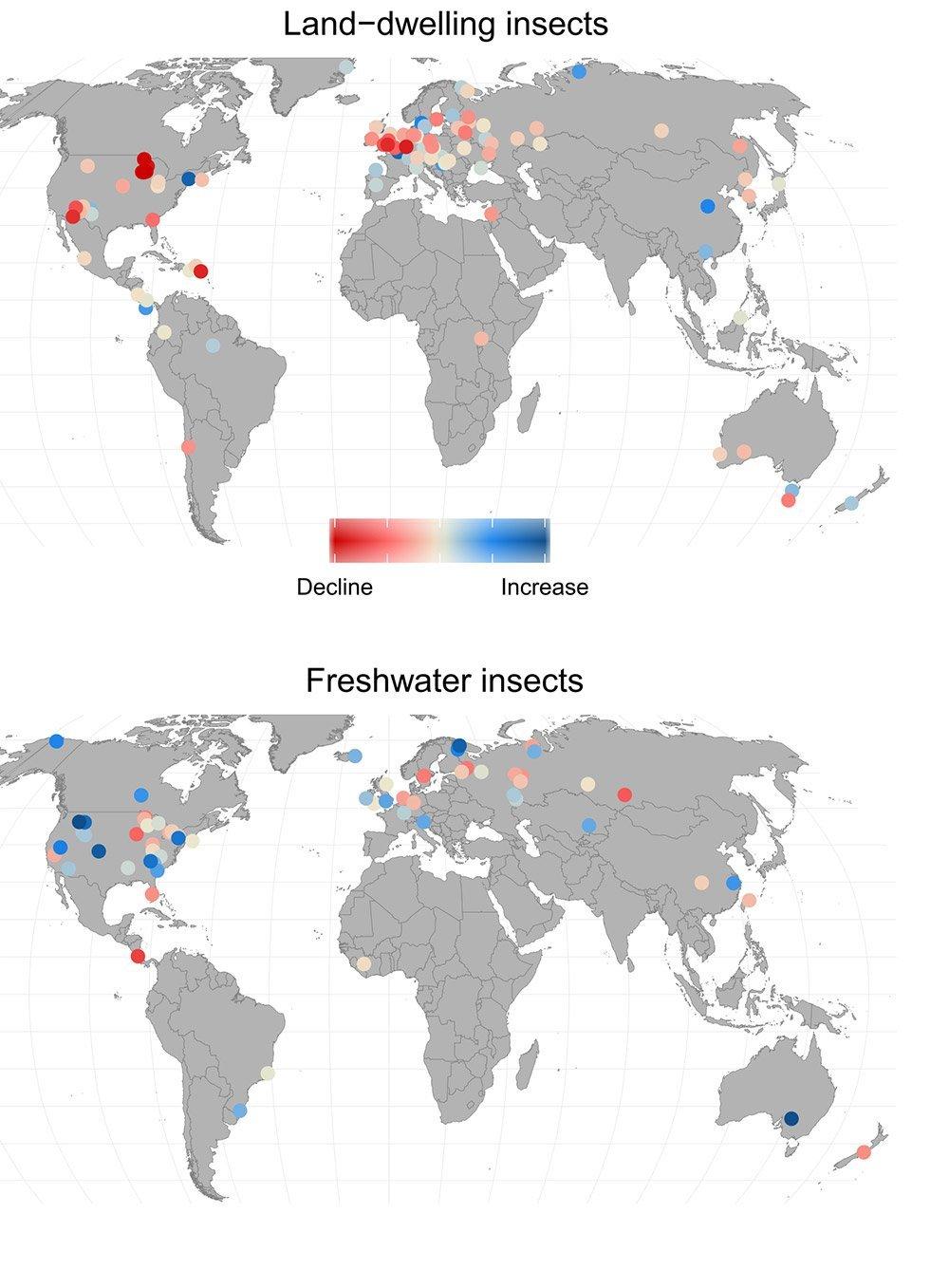 Biomasse Insekten