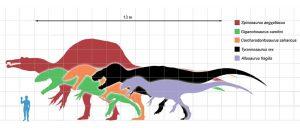 Die größten Theropoden
