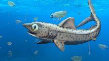 Urzeit-Hai