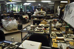 Paläontologie-Labor
