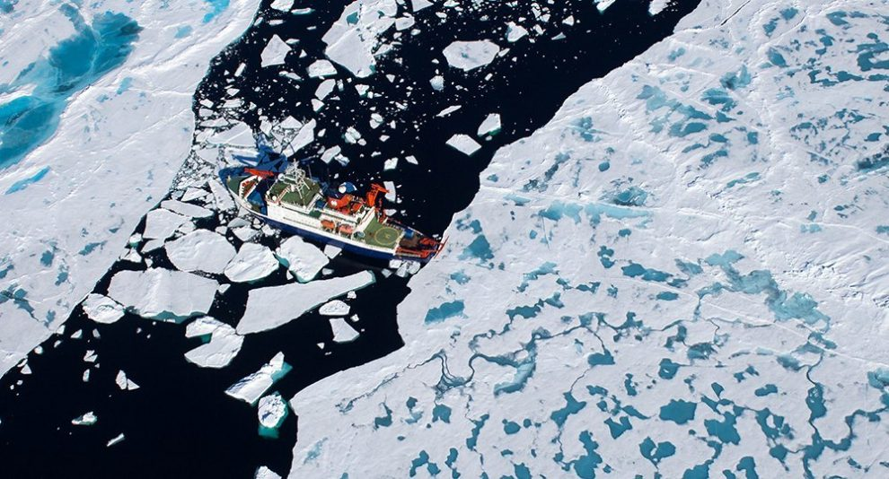 arktisches Meereis