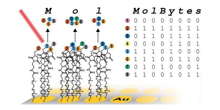 Molekülspeicher