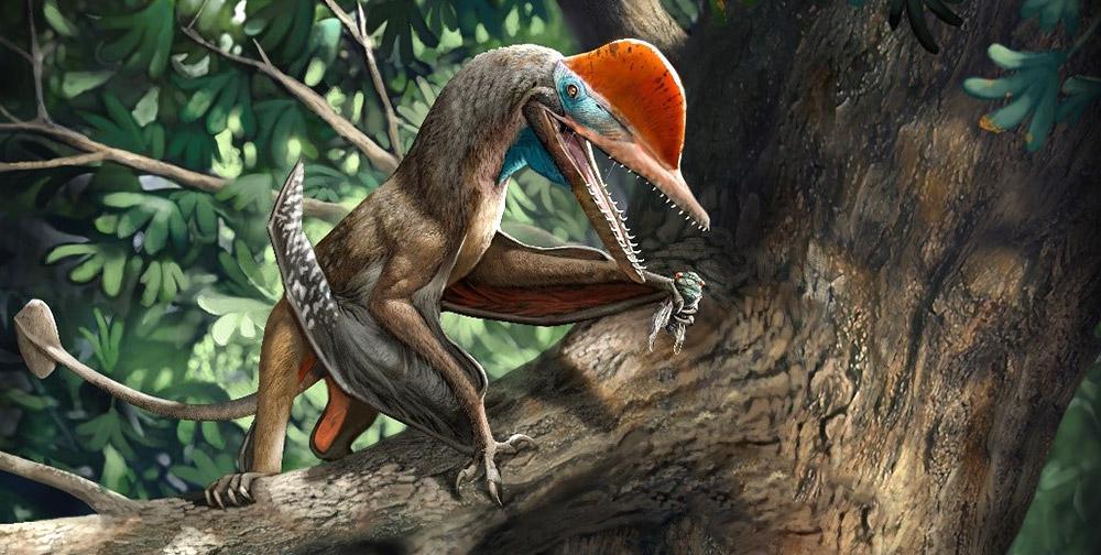 Flugsaurier-ist-ltestes-Tier-mit-opponierbarem-Daumen