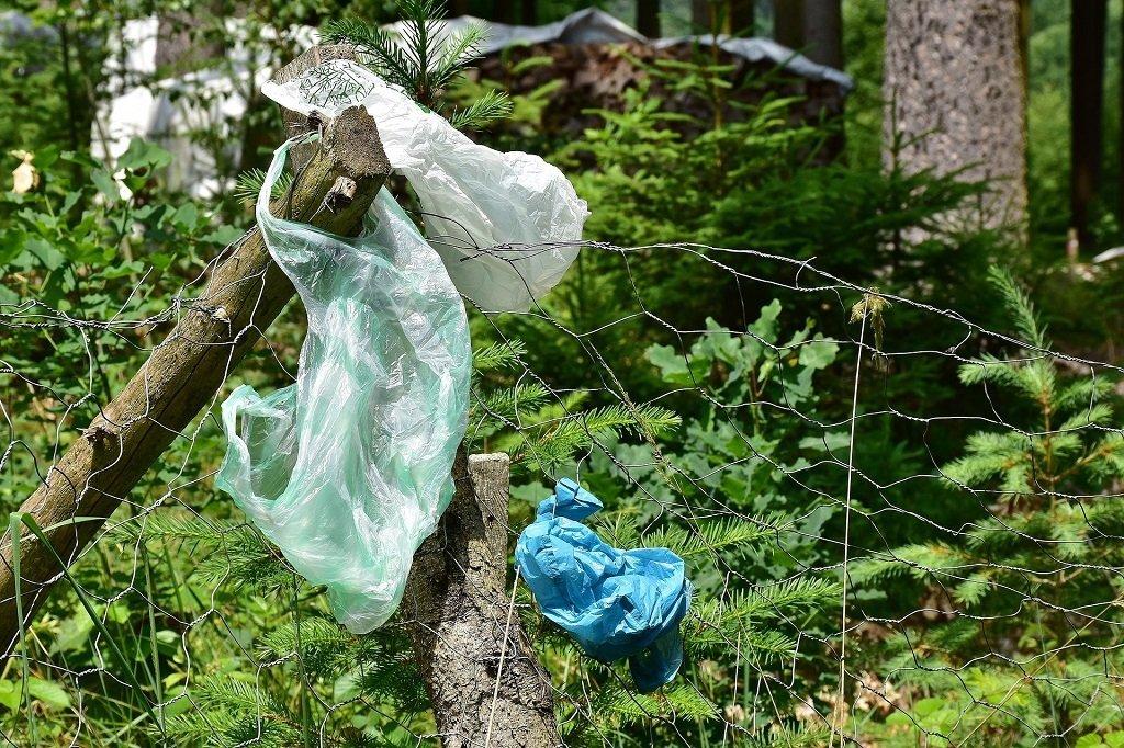 Plastikabfall in der Natur