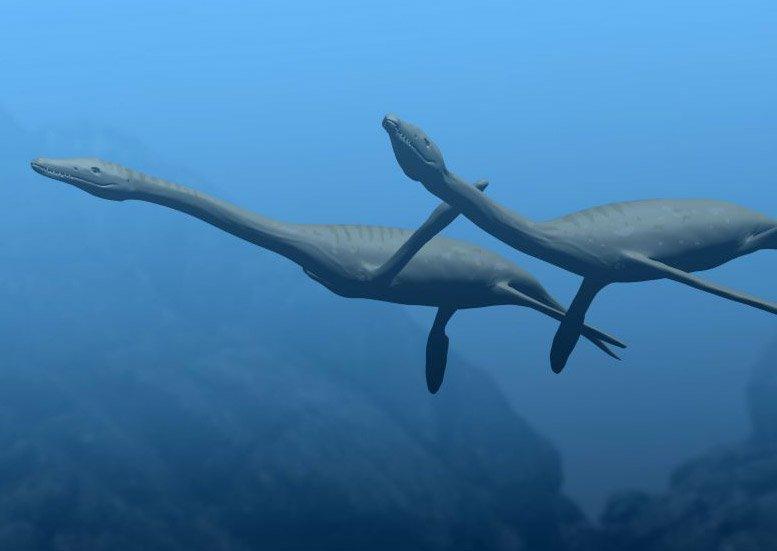 Plesiosaurier