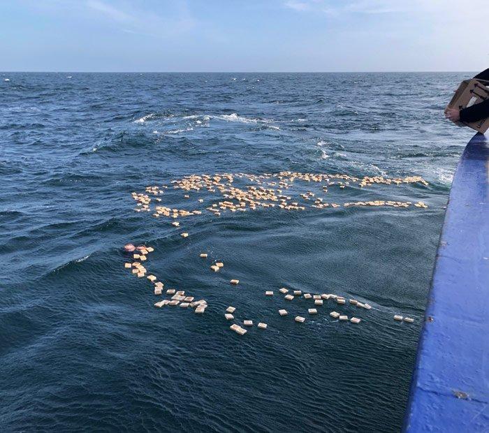 Holzplättchen als Flaschenpost in der Nordsee