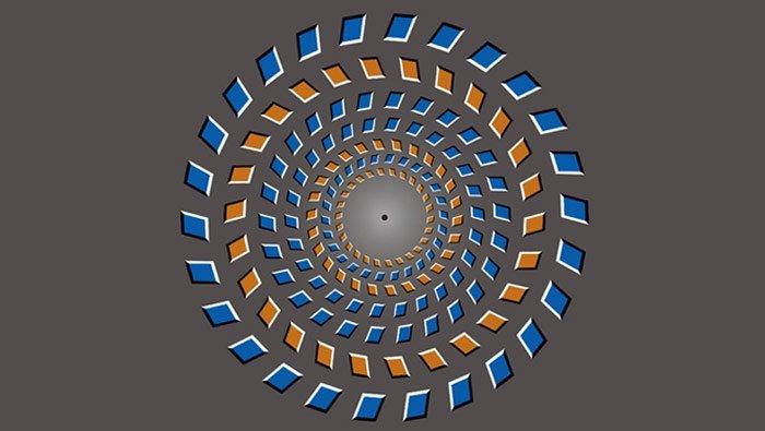 Pinna-Brelstaff-Illusion