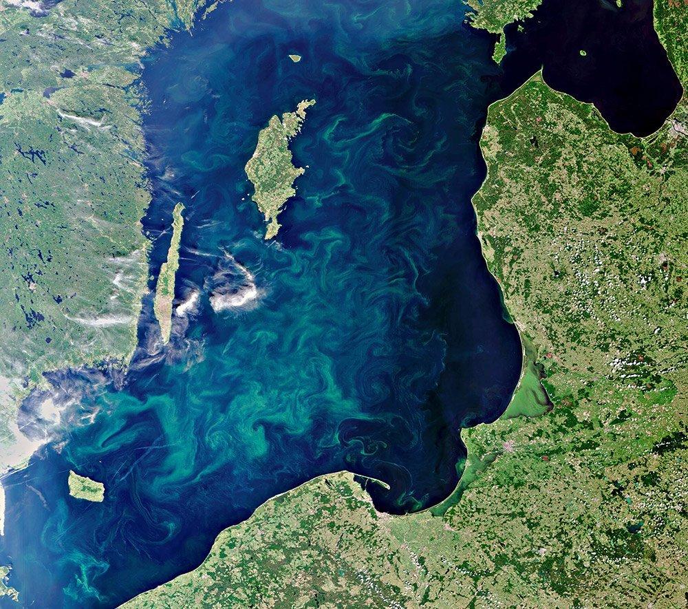 Ostsee-Algenblüte