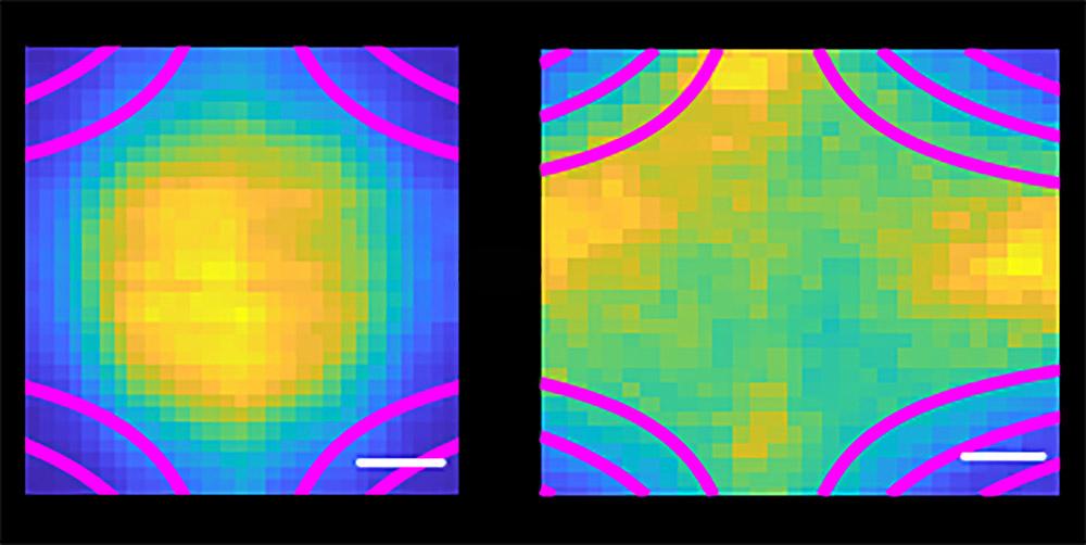 Ultrakaltes Plasma in der Falle - Forscher konstruieren ersten