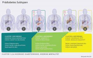 Prädiabetes-Subtypen