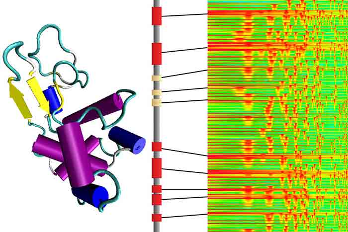 Lysozym-Spektrogramm