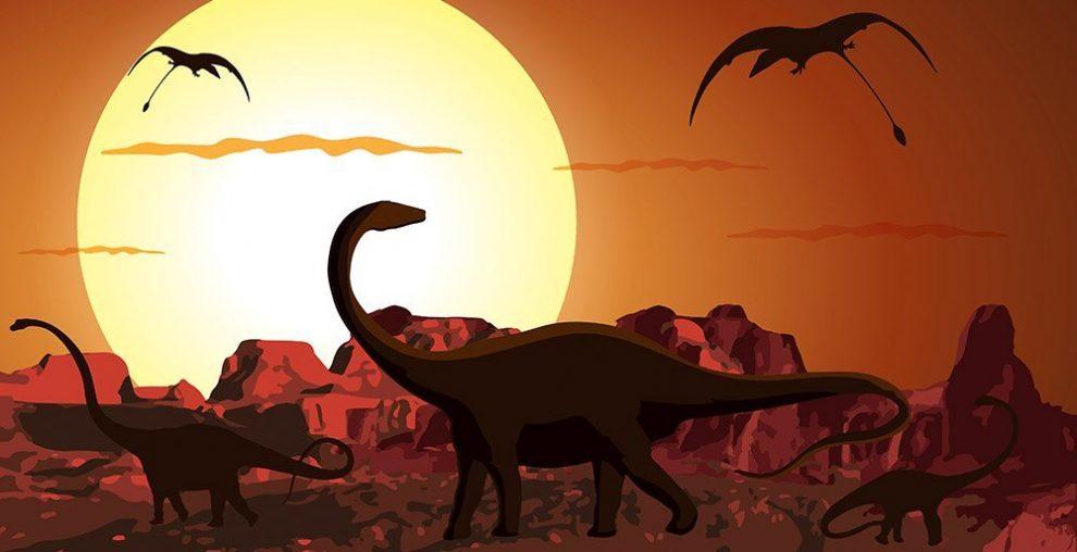 Zu Zeiten Der Dinosaurier War Der Tag Kürzer