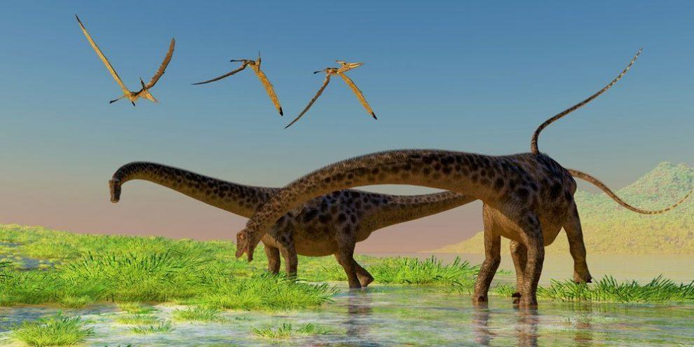 Sauropoden