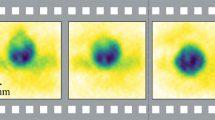 Terahertz-Film