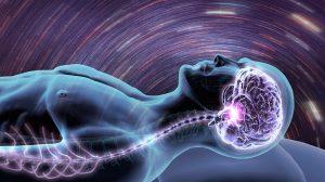 Gehirn im Schlaf
