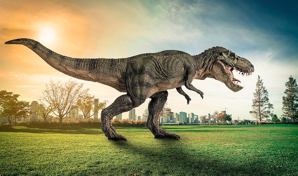 2-5-Milliarden-Tyrannosaurus-rex