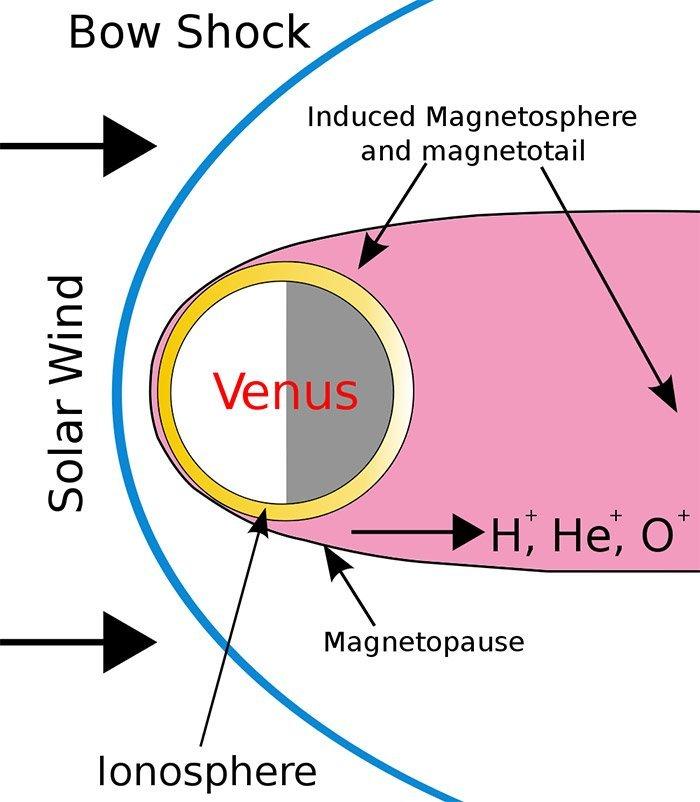 Mangetfeld Venus
