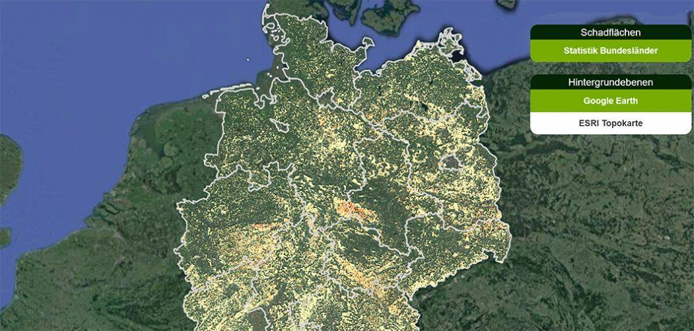 Waldkarte