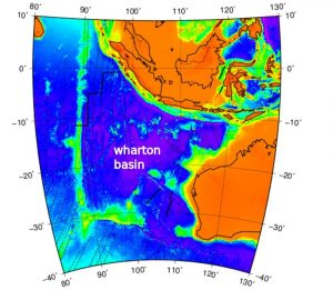Wharton-Becken